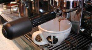 פולי קפה